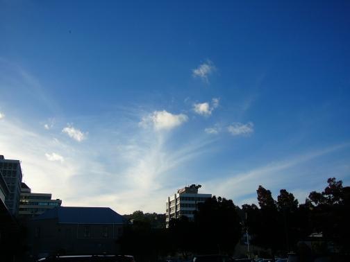 Dunedin sky