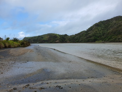 Awakino River view