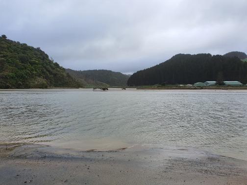 Awakino River view